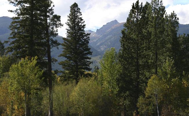 Chief Joseph Ranch Visit Bitterroot Valley