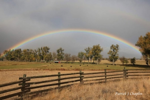 rainbow over a bitterroot valley montana cattle ranch