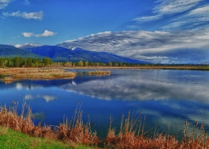 pond at lee metcalf wildlife refuge stevensville montana-toddtaylor