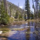 Bitterroot Ranch Vacation