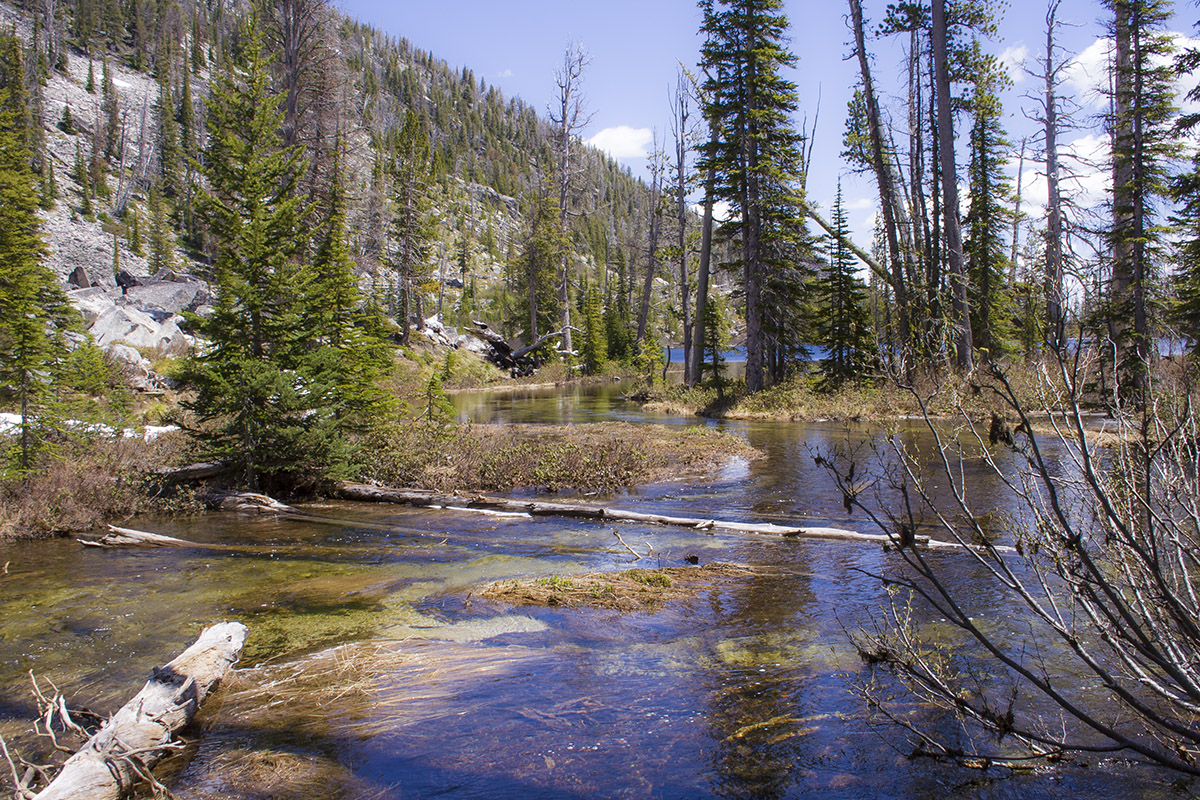 Camas Lake Trail Visit Bitterroot Valley