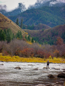fisherman wading into montana river mountains in the background