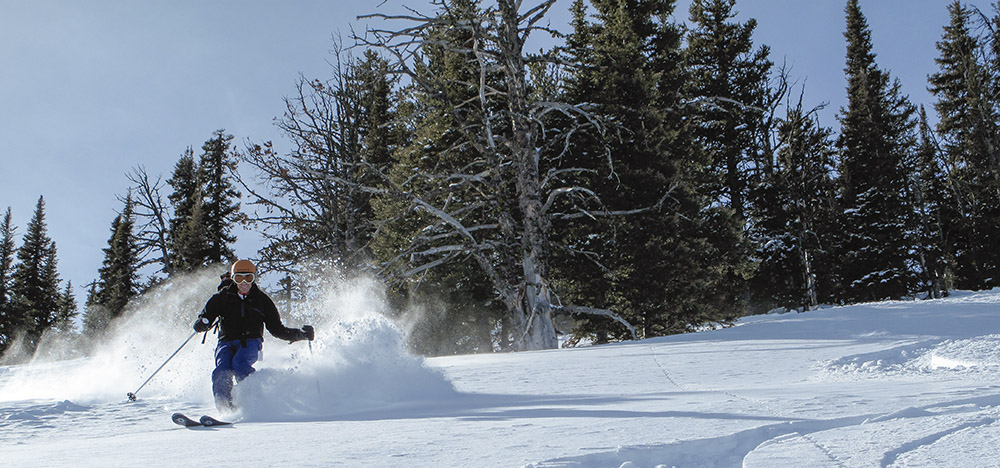 skier in fresh snow in montana