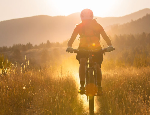 Mountain Bike Season: Get that Bike Tuned up and Ready