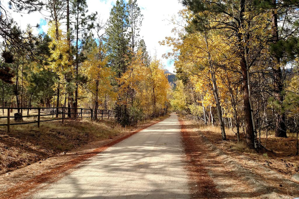 dirt road montana
