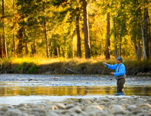 5 Must-Do Fall Activities in Montana's Bitterroot Valley